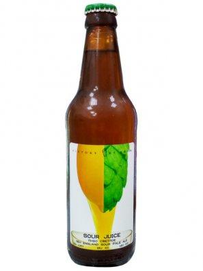 ВикАртБр Саур Эль / Victory Art Brew Sour Juice 0,5л. алк.6,6%