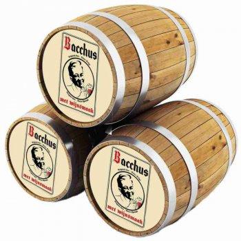 Ван Хонзебрук БАХУС ФРАМБУА малиновое / Bacchus Frambozenbier, keg. алк.5%